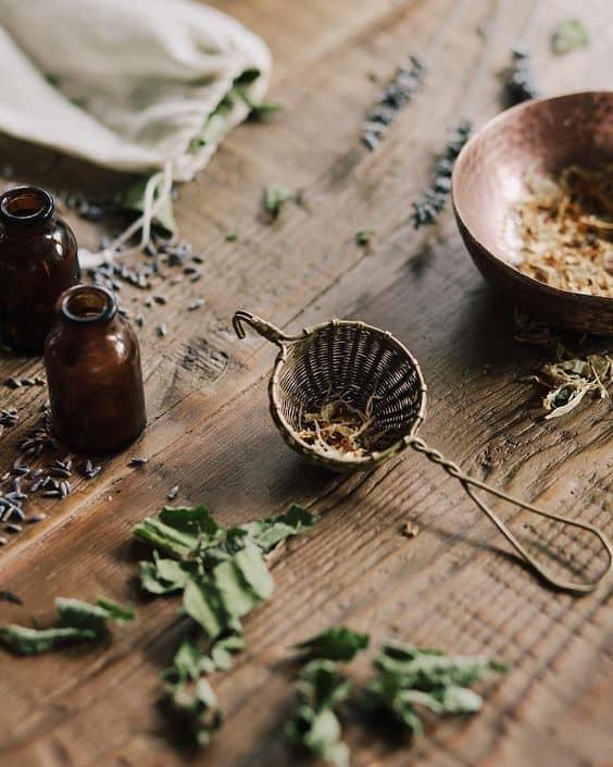 cuisine de l'herboriste